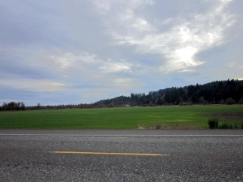 1-Alaska and Vernonia 409