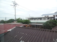 View from the Bangkok hotel. Stray cats walked by on the roof
